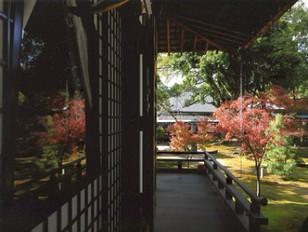 大覚寺にて
