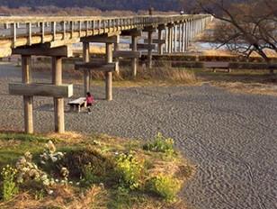 「蓬莱橋の印象」