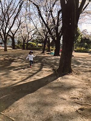 近所の公園にて